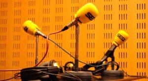 microfono-ser1